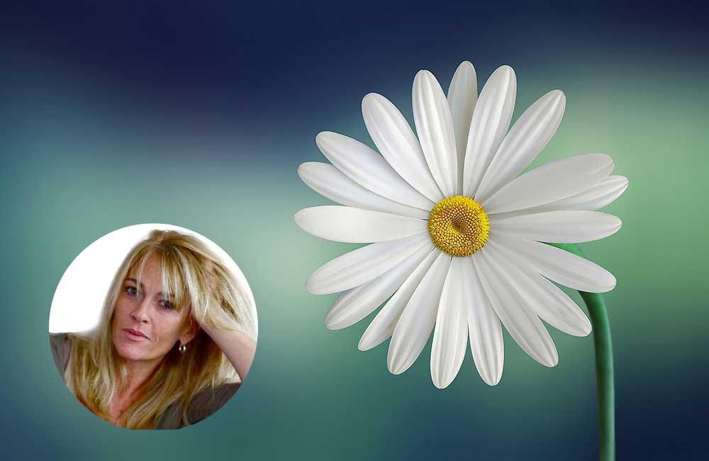 profil-marguerite
